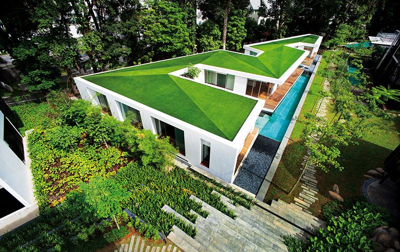 Erba sintetica sul tetto