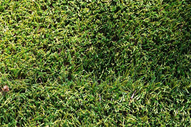 Chiariamo alcuni dubbi sull'erba sintetica con intaso